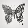 Transform・2015・150×150mm・pencil on paper