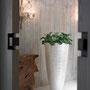 Polar Vase Planters for Life