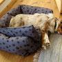 21.10.2011 - Foxi hat ein neues Bettchen bekommen :-)