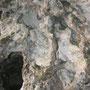 Steingesicht 2