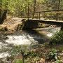 Auenlandschaft 3 mit Brücke