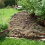 Das neue Hügelbeet: Permakultur. Also der alte Baumstucken, wo der Trog drauf ist, der ist so verrottet, dass der Trog schief ist.
