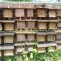 Insektenhotel: ausgebucht