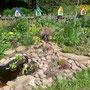 Teich + Steingarten