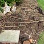 Noch mal Hügelbeet. Ich habe auch Topfscherben versteckt, als Fluchtversteck für meine Eidechsen (und Molche) - wenn die Hühner anrücken.