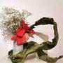 Dr. A. Lecca: Weihnachtsstern, Schleierkraut, (Hirschzungen-)Farn