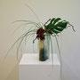 K. Tatai: Celosia, Philodendronblatt, Korkenzieherhasel, Bärgras