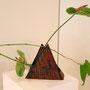 H. Lüder-Schirmer: Anthurie, japanischer Knöterich