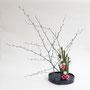 E. Streubel: Japanischer Knöterich, rosa Lisianthus (Foto: O. Streubel)