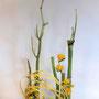 A. Mühlbauer: Rhabarberstangen, Santini, Fresien, gelb gefärbte Furnierstreifen