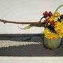 M. Ogita-Rehm: Narzissen, Fruchtstände Eukalyptus