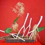 R. Dollberg: Mitsumata-Zweige, Wald-Geißbart, Funkien