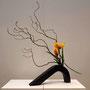 R. Dollberg: Korkenzieherweide, Tulpen