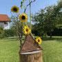 K. Tatai: Spiel mit mir (Sonnenblumen, Korkenzieherhasel, Baumstumpf)