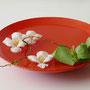 R. Tabuki: Tulpen, Korkenzieherweide