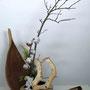 Dr. H. Lüder-Schirmer: Baumwolle, Ahornzweig, Späne eines Weihnachtsbaums, gelbe Scheinzypresse (Lebensbaum), Palmenblatt (Foto: Dr. A. Schirmer)