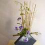 A. Sandl: Stiefmütterchen, Clematis, Bambus, Zweig