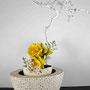 R. Hadank: weiß gefärbter Korkenzieherhasel, Narzissen, Kirschblüten - Das Gelbe vom Ei
