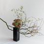 E. Streubel: Drehweide, Fetthenne (Sedum) (Freier Stil, Herbst) (Foto: O. Streubel)