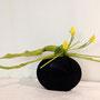 R. Puschban: getrocknete und gefärbte Strelizienblätter, Tulpen