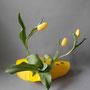 I. Truttmann: Tulpen in einem selbstgemachten Plexiglasgefäß
