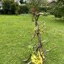 K. Tatai: Trost für durstige Zweige (Gladiolen, Philodendronblätter, Dieffenbachia, Strandhafer, Margeriten, Johanniskraut-Beeren, getrocknete Zweige)