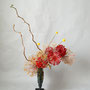 T. Hayashi-Matt: Allium (getrocknet, teilweise gefärbt), Craspedia, Korkenzieherhasel