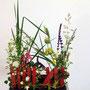 R. Puschban: Brandkraut, Salbei, Frauenmantel, Iris sibirika (Fruchtstände und Blätter), diverse Gräser - Bauerngärtchen