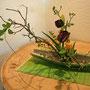 H. Eger: wilder Hartriegel, Tulpen, gewöhnliche Taubnessel