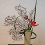R. Dollberg: Gloriosa, Typhablätter, Koralle
