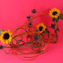 """A. Denig: Schachtelhalm, Sonnenblumen, Disteln, Elektrokabel - """"Looping"""""""
