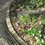 こもれびの庭