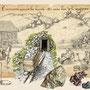Illustration pour décor Com visuelle Hautes-Mynes du Thillot (88) - Carrefour Uhlmann - Reproduction et aggrandissement 12 m x 4 m - 2016