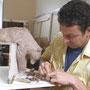 Ours - Argile - L 30 x larg. 17 x H 25 cm - 2006<br><br>sculpture ours . sculpture animalière