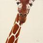 Girafe - Acrylique sur bois - Polyptique - 50 x 50 cm <br><br>Peinture . peintre animalier . artiste peintre . peinture animalière . animal . peinture bicolore