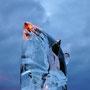 Ours polaire - Sculpture en glace transparente - Environ 100 kg - L 50 x larg.50 x H 100 cm - 2014 <br><br>Sculpture animalière . art éphèmere .  sculpture ours