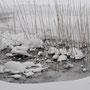 長瀬川流域・冬景色
