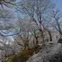 亀ヶ城址の冬景色