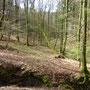 nabij Wallendorf