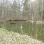 meertje nabij Wallendorf