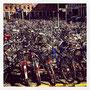 Münster = Velostadt! Angeblich kommen sie hier auf 2.4 Fahrräder pro Einwohner :-).
