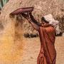 Claude Fournon : Visages de l'Inde du Sud