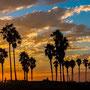 Gilles Le Gall : Los Angeles-Santa Monica