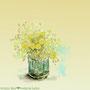 「spring」