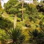 Im Park von Serralves
