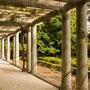 Laubengang im Park von Serralves