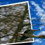 und da Fliegt er in die Sonne.................:-)))