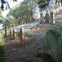 Judenfriedhof in Landau