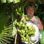 Alanya 2008  (Zum Vergrößern anklicken)