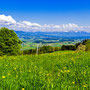 Blick in Zürcher Oberland